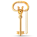 key, lock icon